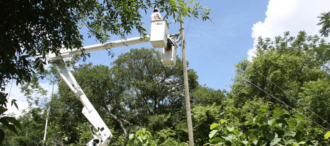 Distribución y comercialización de Energía Eléctrica