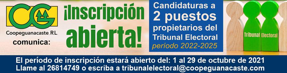 Inscripción candidaturas Tribunal Electoral